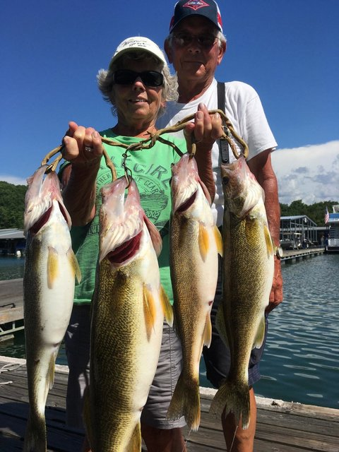 The dale hollow fishing report for Dale hollow lake fishing report