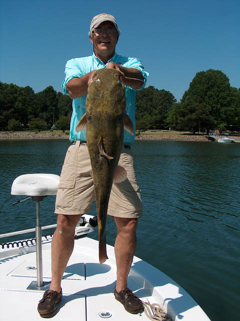 Fishin com - Lake Norman Fishing Report