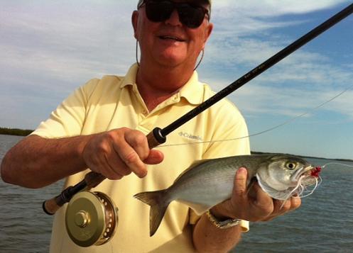 Mosquito lagoon daytona new smyrna beach for New smyrna fishing report