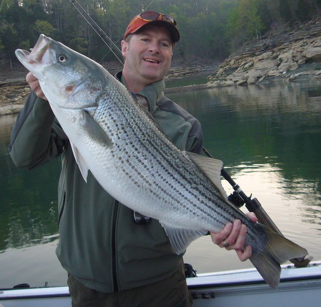 captain jim 39 s lake cumberland fishing report