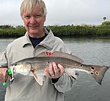 Click image for larger version.  Name:March2019 Ken Redfish 9 spot.jpg Views:22 Size:140.5 KB ID:18363