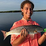 Click image for larger version.  Name:August2018MalloryRedfish.jpg Views:115 Size:114.5 KB ID:17430