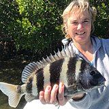 Click image for larger version.  Name:February2019NickySheepshead.jpg Views:37 Size:161.1 KB ID:18291