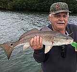 Click image for larger version.  Name:May 2021 Ralph Redfish.jpg Views:18 Size:181.2 KB ID:20442