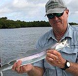 Click image for larger version.  Name:June2019 CaptMikeCutlassfish.jpg Views:66 Size:126.3 KB ID:18856