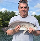 Click image for larger version.  Name:March 2021 Darin Redfish.jpg Views:29 Size:179.4 KB ID:20405