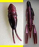 Click image for larger version.  Name:craw grub.jpg Views:131 Size:6.3 KB ID:17411